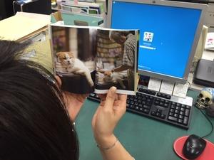 写真3_まる文庫.JPG